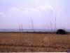 sommer2003_077