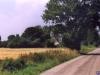 sommer2003_079