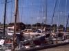 sommer2003_082