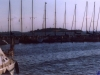 sommer2003_121