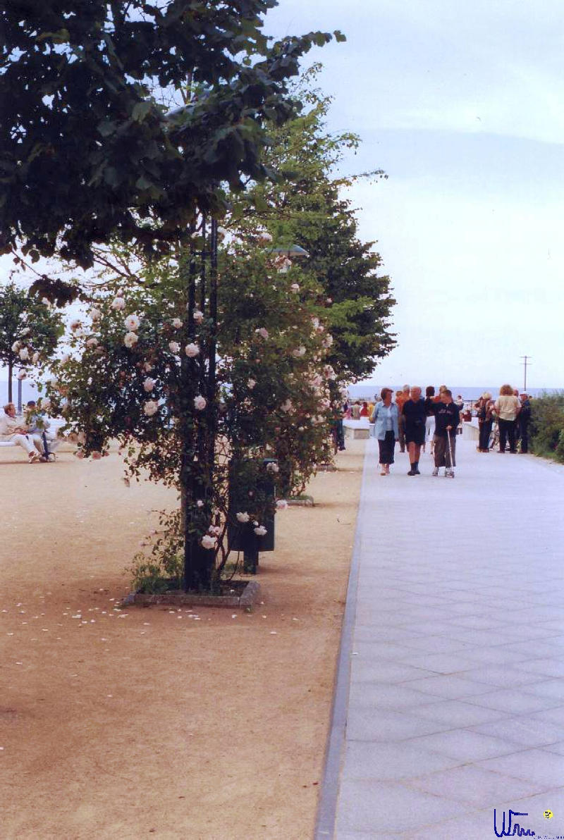 sommer2004_022