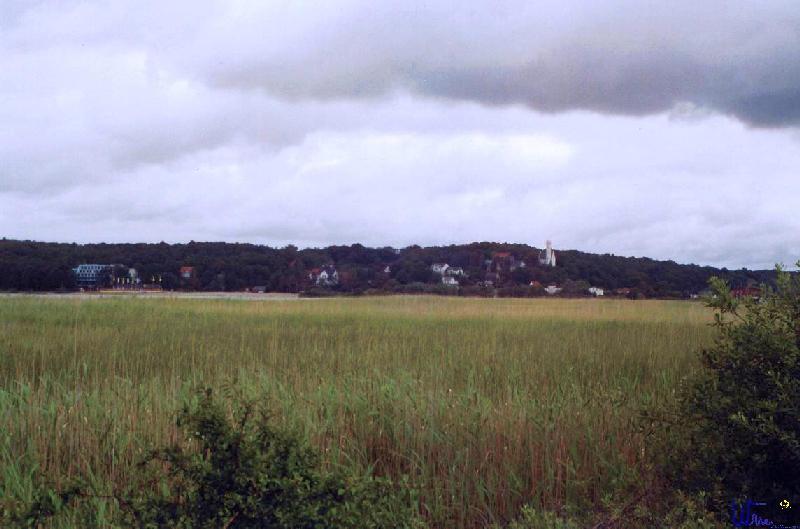sommer2004_027