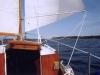 sommer2004_041
