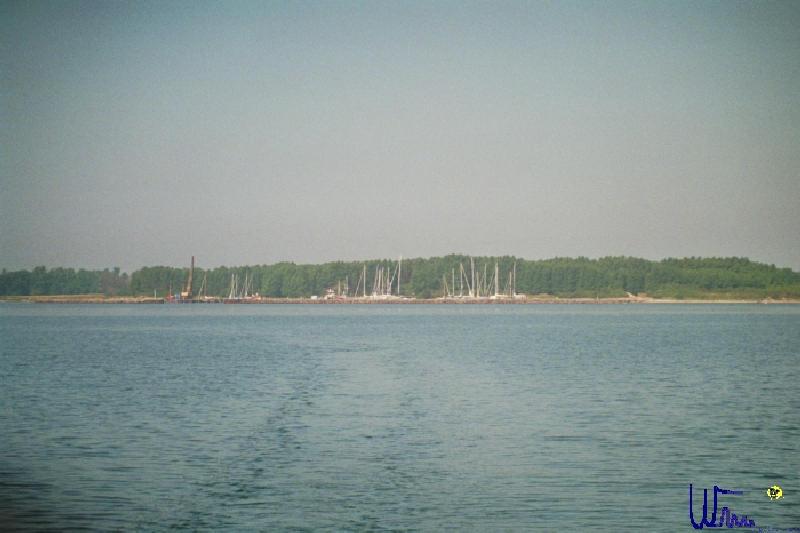 sommer2007_001