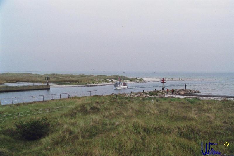 sommer2007_066