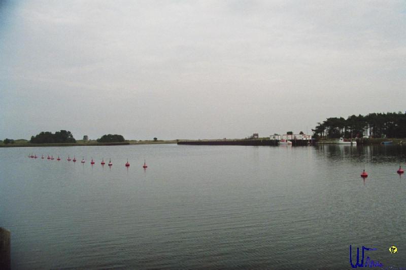 sommer2007_067