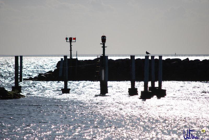 sommer2008_120
