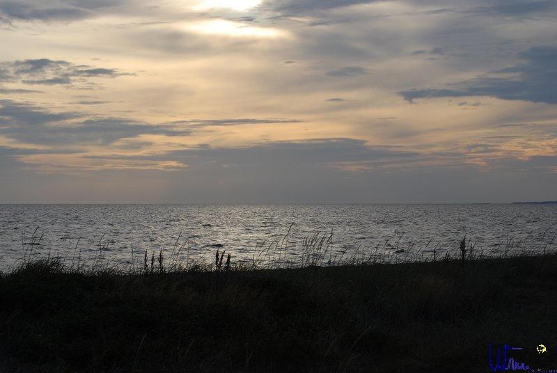 sommer2008_130