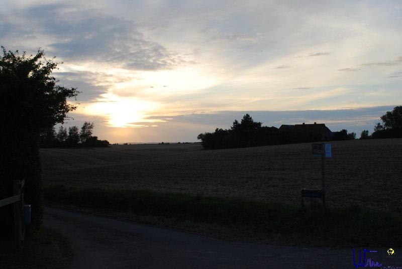 sommer2008_134