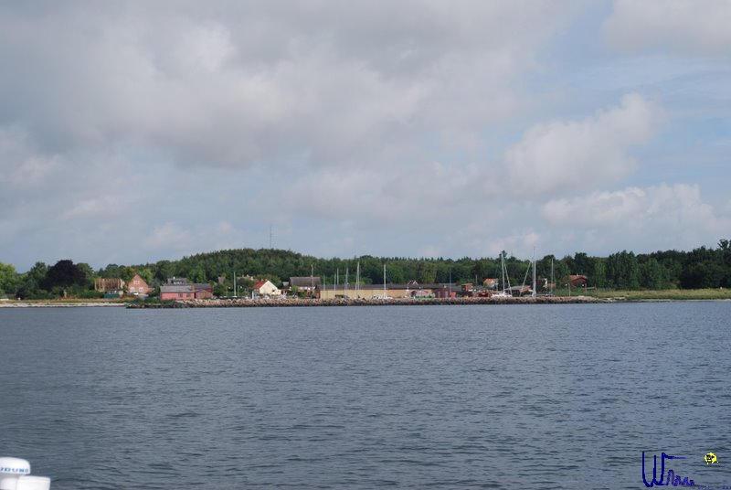 sommer2008_151