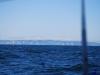 sommer2008_043