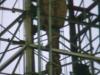 versorger1984_017