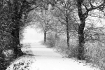 winter2017_so_far_012