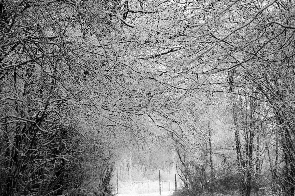 winter2017_so_far_014