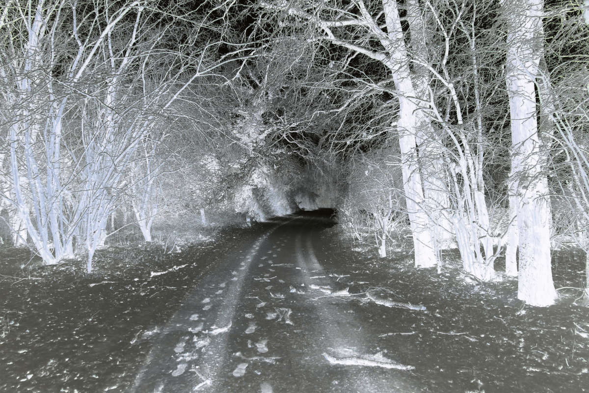 winter2017_so_far_015