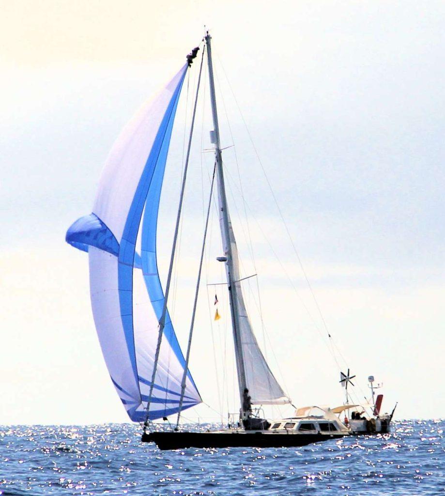 stormvogel_sail_0016