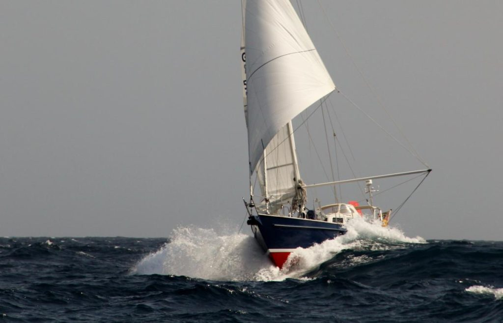 STORMVOGEL vor dem Wind in action