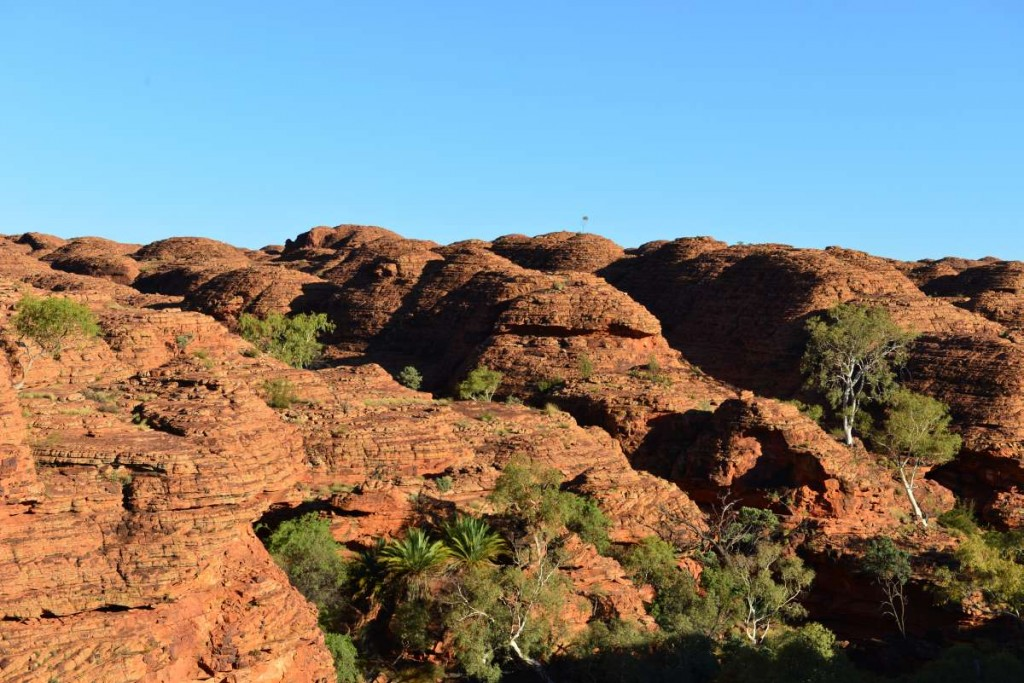 australia_kings_canyon_0061