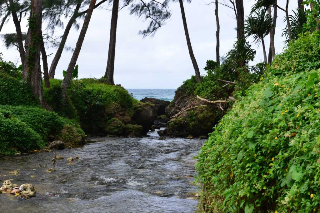 efate_island_tour_0021