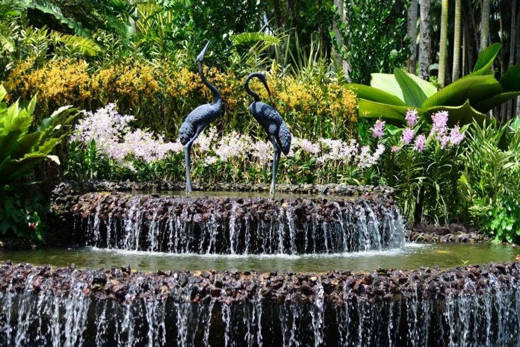singapore_botanicgarden_0011