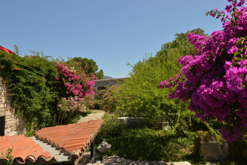 bodrum_datca_turkey_west_0186